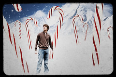 "Day 343/365 ""The Candy Cane Forest"" (Hunter Wilson) Tags: christmas winter portrait snow mountains cold forest photoshop self d50 nikon december nolan manipulation elf wilson hunter candycane 2008 wellstone candyland ttv 365days 25daysofchristmas hunterwilson"