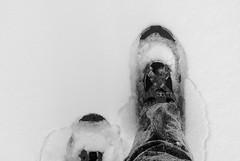 200812_11_03 - Snowshoes