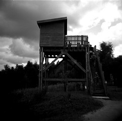 All along the watchtower (Willem Blancke) Tags: blackandwhite 120 6x6 film agfa holliday dianaf watchtower chlorophylle duoscan agfaduoscan