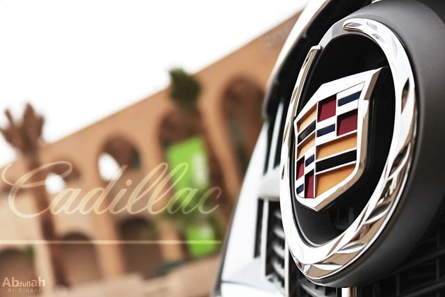 car logo cadillac srx سيارة 2011 الغانم كاديلاك