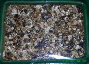 metodo pellicola - vermiculite