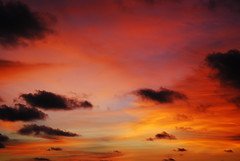 La tela (DarioM_72) Tags: travel sunset sky seascape beach nature colors clouds sunrise landscape thailand island scenery holidays asia tramonto nuvole alba bangkok cielo phuket emotions viaggio shiningstar vacanze phiphiisland 2007 musictomyeyes nikond80 dariomilano