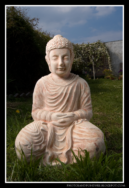 Buddha (4 of 3)