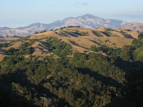 Mt. Diablo from Pinehurst