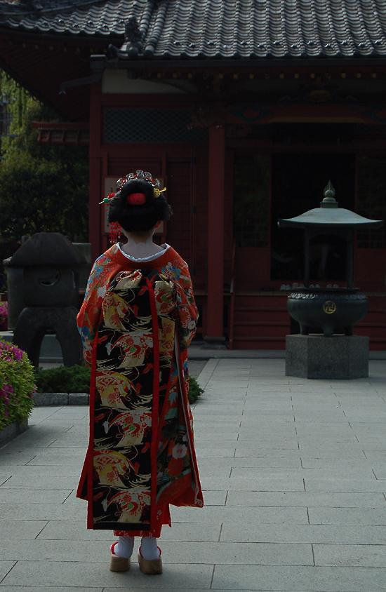 _geisha_