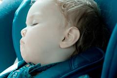 sleeping (p.lorenc) Tags: lilla lorencowie