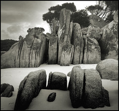 Granite joints (katepedley) Tags: blackandwhite bw beach rock interestingness sand sony australia explore granite tasmania lichen geology sthelens joints igneous bayoffires dscp92 binalongbay plutonic