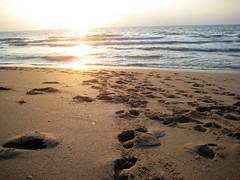 Sun hits the Beach