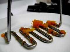 masher (parttimefarm) Tags: brasil doce chacara echapora masher abobora