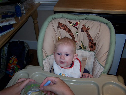 The High Chair at Home 5