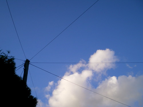 http://www baycable com/assets/images/planar-ribbonLG jpg http