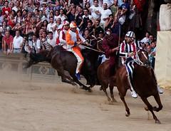 Il Palio di Siena (Dean Ayres) Tags: horses italy horse green race speed italia crowd dirt jockey tuscany siena dust spectators toscana awe rider palio piazzadelcampo medics