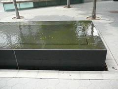 P1000533 (Vangal Venkatesh) Tags: newyork tz1
