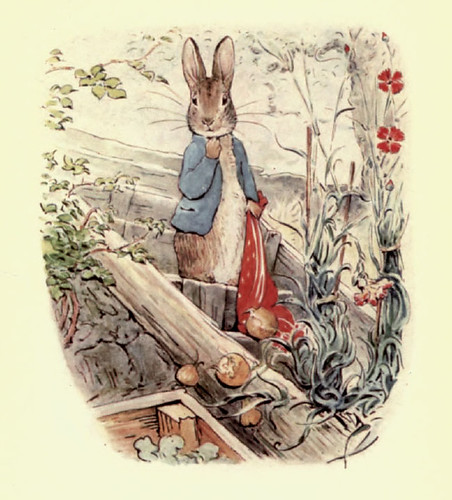 04- The Tale of Benjamin Bunny