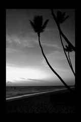 (Mario_0609) Tags: ocean sunset sea blackandwhite white black beach night sand waves dominicanrepublic carribean palm resort whitesand puntacana onblack bavaro grandpalladium blackwhitephotos grandpalladiumbavaroresort