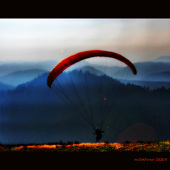 Taking off (MyOakForest) Tags: vivid paraglider schwarzwald blackforest paraglide mauntains fallschirm superaplus aplusphoto myoakforest