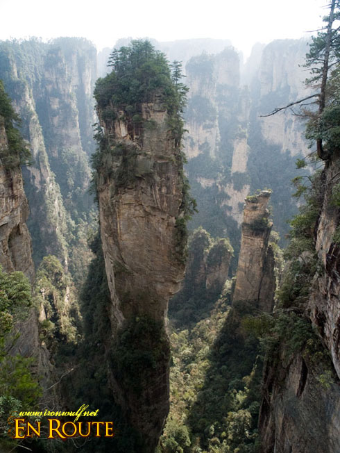 Wulingyuan's Natural Forest of Peaks