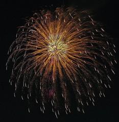 Very Good Weeping Willow (EpicFireworks) Tags: star fireworks guyfawkes firework pyro 13g epic pyrotechnics sib