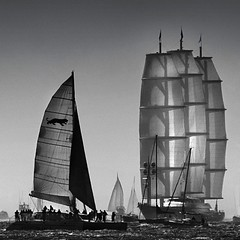 Maltese Falcon Keeps Grace with the Sea (500x500 version) (gcquinn) Tags: bay san francisco sailing geoff adventure falcon quinn mast sailor geoffrey maltese 2008 thee sloop 500x500 maltesefalcongigandmelowen