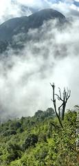 Misty Hoang Lien Mountain Foot (Cuong T Tran Photography) Tags: panorama mountain art vietnam hdr sapa fansipan hoanglienson