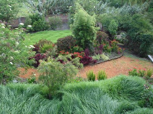 primavera gardens cotacachi color