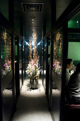 個室風情 かざがぐるま, 渋谷