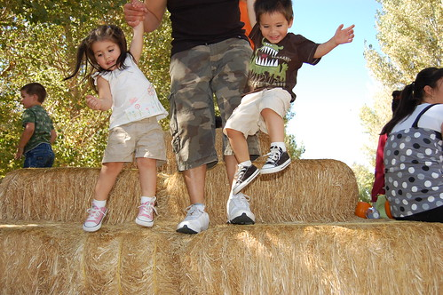 Pumpkin Patch w/ Family