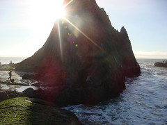 MartinsBeach_2007-015 (Martins Beach, California, United States) Photo