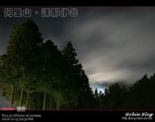 你拍攝的 20081115數位攝影_阿里山之旅418.jpg。