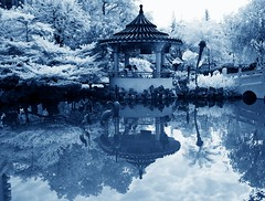 Infrared@Lai Chi Kok Park (hk_traveller) Tags: park reflection canon ir hongkong interestingness interesting hong kong explore filter infrared g1 top100 uc  65 canong1 r72 douban top500 laichikok supershot interestingness65 i500 lck goldstaraward  multimegashot flickrclassique heavenlycaptures