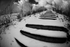 unberhrt - untouched (Alt_Gr *slowly getting back* www.nilseisfeld.de) Tags: schnee winter snow stairs canon eos treppe 5d 15mm blackwhitephotos