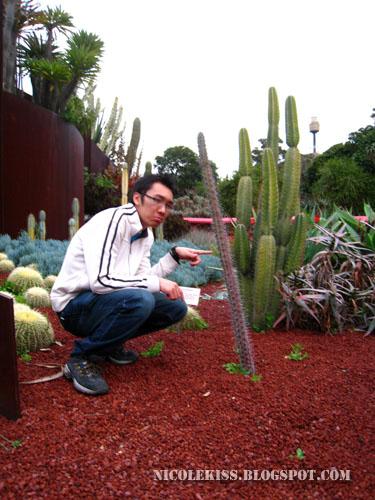 kif and his tall thin cactus