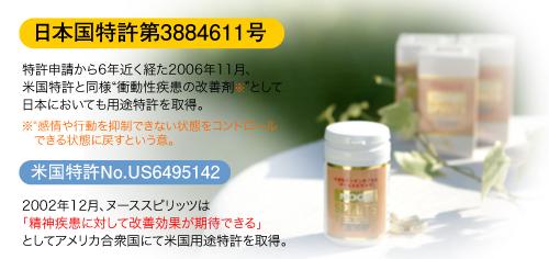 うつ サプリメント ヌーススピリッツ 2