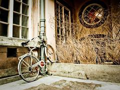 Forgotten bike (sethcracow) Tags: bike poland krakow cracow krakoff nowakowiepl cyklofotografia2010
