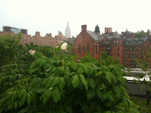 The Episcopal Seminary from the High Line