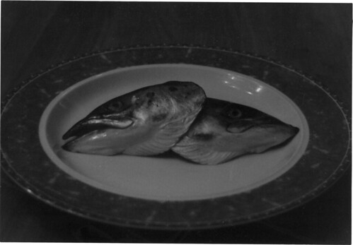 fish_head