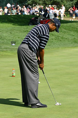 Tiger Woods  PGA Golf Professional