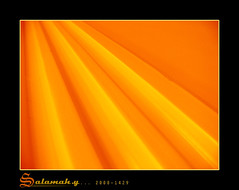 Orange Ray Lines (Salamah.y) Tags: orange abstract lines 30 ray panasonic fz30 salamah    abstracting