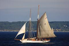 boats san juan