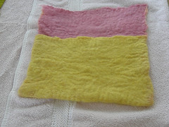 Felted DPN case