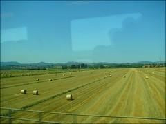 ... in treno per il sud (•:• panti •:•) Tags: cielo campo treno velocità riflesso fieno balledifieno