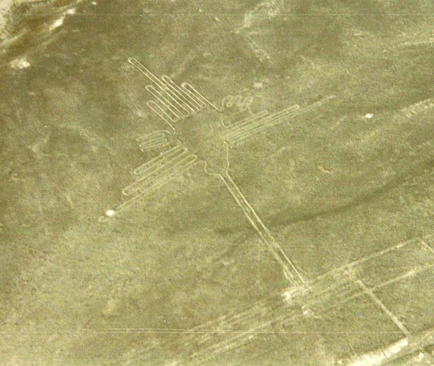 Nazca (3)