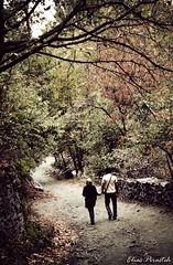 Lane of autumn (Elias Pirasteh) Tags: road autumn fall love walking alley iran lane gathering iranian  khorasan    mashad      azqad