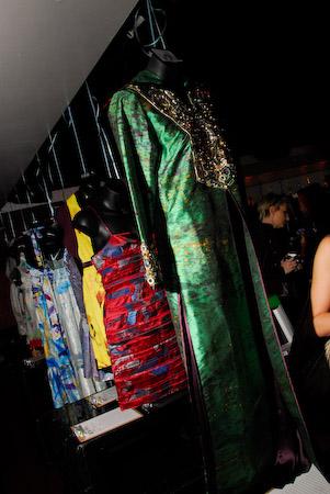 eco-fashion Elephant-painted dresses at silent auction