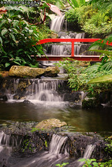 Outdoorgraphy™: Waterfall @ Penang Butterfly Farm