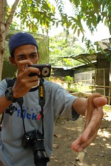 Sir Mart Outdoorgraphy™ @ Butterfly Farm #7