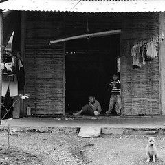 Hut near Hue (esterina on silver) Tags: poverty voyage travel blackandwhite bw house children asia southeastasia village noiretblanc streetphotography photojournalism streetlife bamboo vietnam asie enfants maison bambou pauvret yashicafx3 photoreporter asiedusudest thechallengefactory allcopyrightsestherct