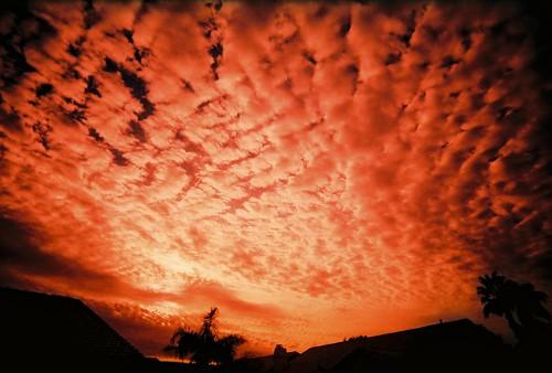 フリー画像| 自然風景| 空の風景| 雲の風景| 朝日/朝焼け| アメリカ風景|      フリー素材|
