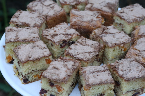 Cinnamon Streusel Coffee Cake with Dried Cranberries and Apricots
