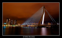 Erasmus Bridge - Rotterdam (DolliaSH) Tags: city longexposure bridge light urban haven holland color water colors dutch architecture night canon reflections river puente photography lights noche photo rotterdam europe foto nightshot photos nacht harbour tripod nederland thenetherlands wideangle ponte most le pont brug maas iq 1020mm brcke ultrawide nuit kopvanzuid efs notte stad 1022 erasmusbrug noch zuidholland brucke erasmusbridge southholland 50d efs1022 nachtopname tonemap canon50d dollia dollias sheombar